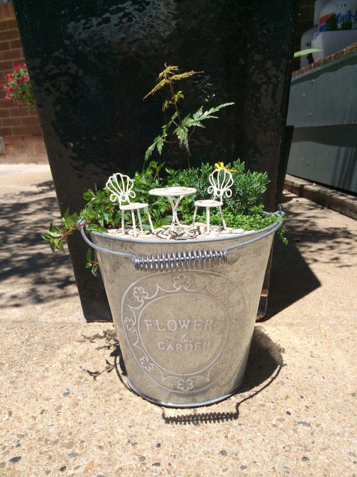 A little garden in a bucket