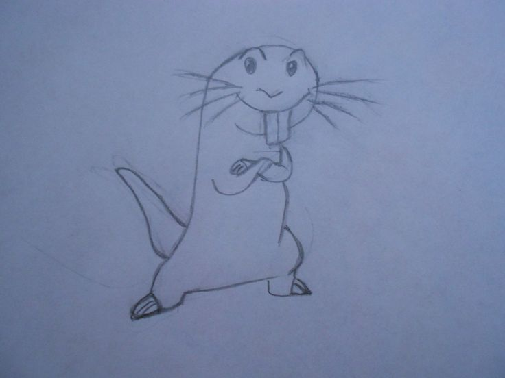Rufus from Kim Possible