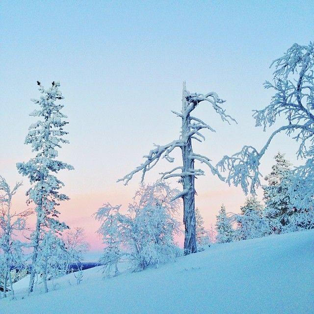 Lapland, photo by Samuel Taipale