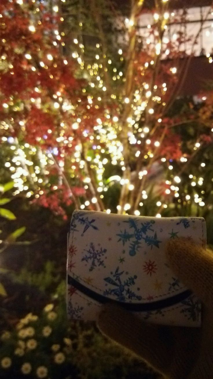 Merry Xmas and Happy new year! 良い御年を…