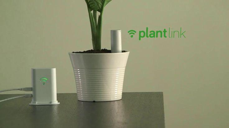 Pour donner la parole à vos plantes favorites, il suffit de planter ce capteur dans vos jardinières, vos pots de fleurs ou votre pelouse. Vous serez alerté sur votre SmartPhone dès que vos plantes auront besoin d'eau.