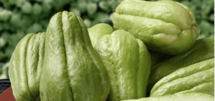 THEY TOLD ME TO EAT CHAYOTE FOR A MONTH, AFTER A WEEK I FELT SOMETHING IN MY HEART THAT SCARED ME AND WHEN I WENT TO THE DOCTOR THE DOCTOR TOLD ME THIS …!