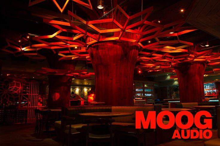 moog-audio-publicité-tastet-4