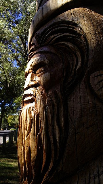 Images about creative tree art on pinterest of