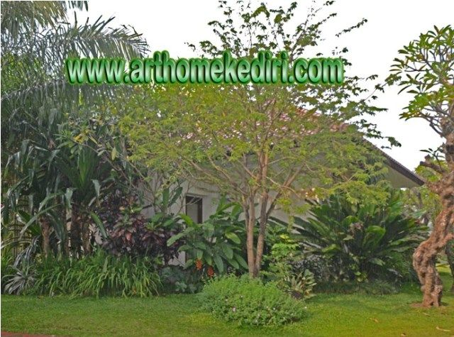 seni taman,relief,air terjun,kolam, taman minimalis,kolam renang di kediri-blitar-nganjuk-jombang-madiun-tulungagung