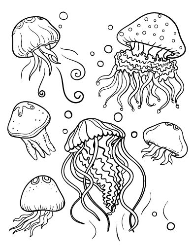 Printable jellyfish coloring page