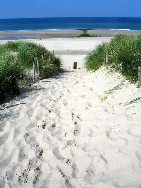 Dune Passage at Schoorl - By doc(q)man nederland