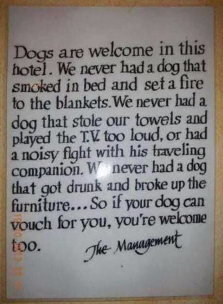 This was so good I pinned it twice! Dogs are welcome