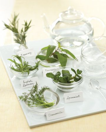 self-serve tea station w/ fresh herbs