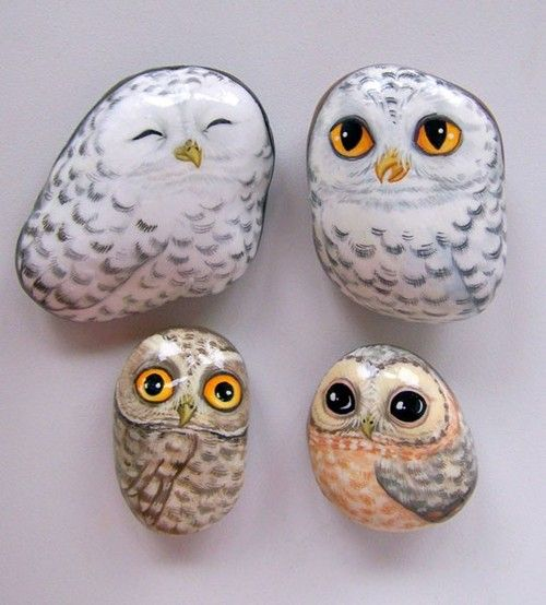 Owls painted on stones