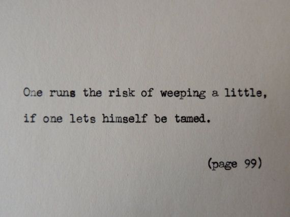 """""""One runs the risk of weeping a little, if one lets himself be tamed"""" - The Little Prince // Say it with Lit on etsy"""