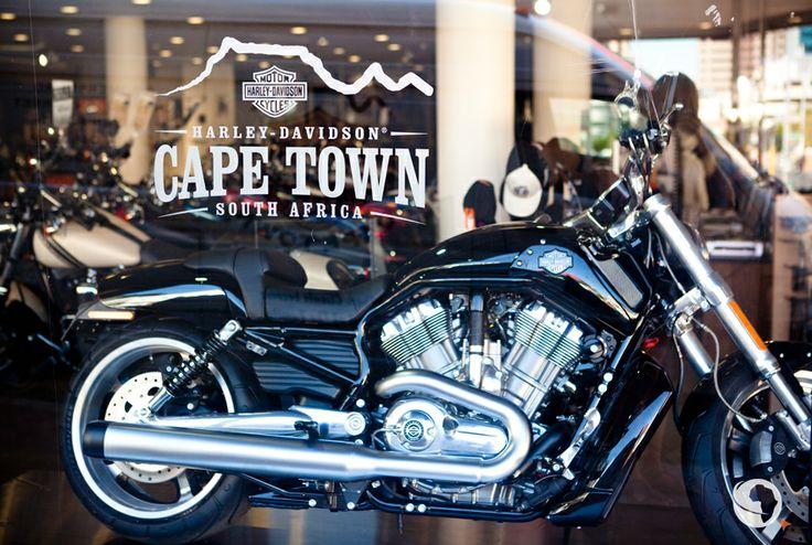 #HarleyDavidson #CapeTown #AfricanAdventure #ChapmansPeak