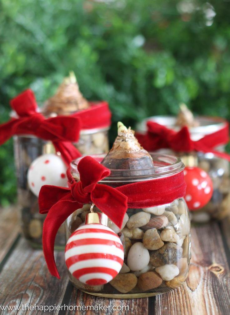 DIY Paperwhite Bulb Mason Jar Gift