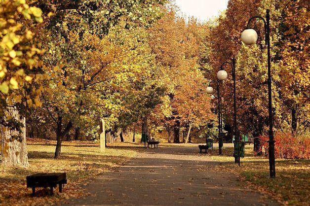 Piękna Polska jesień - zachwyca i dodaje nam energii do dalszych działań :)