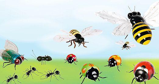 Naturgetreue oder lustige Varianten von Marienkäfern, Bienen oder Ameisen in Lebensgröße.