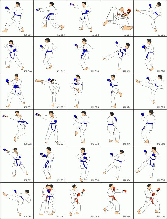 karate tutorial for beginners pdf