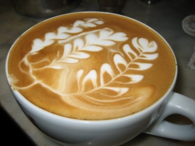 how to make a latte fern