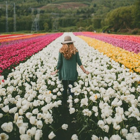 Tulip fields! This looks like a total dream.