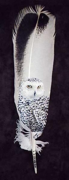 Owls Painted on Feathers Decor idea for use with WHOOT warmer https://ericahammond.scentsy.us/Scentsy/Buy/ProductDetails/DSW-WHOO https://ericahammond.scentsy.us/Scentsy/Buy/ProductDetails/23211