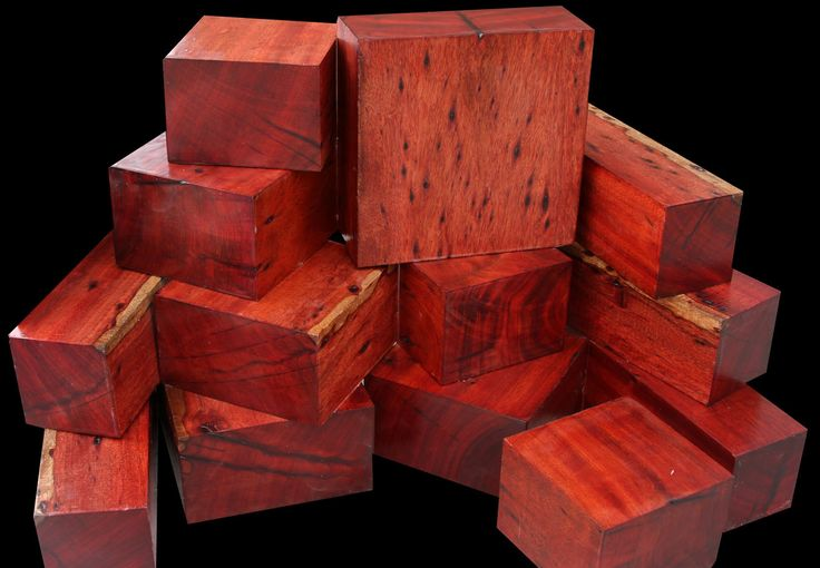 "BLOODWOOD (Brosimum paraense), has commercial names that include Cardinal wood, Blood wood, Satine, Satina, and Satine rubanne. A dense, fine grained wood, Bloodwood takes a high polish and can be used for anything from musical instruments, fine furniture, flooring, dye wood and intarsia, to inlay, and more. From South America (chiefly Brazil) Bloodwood trees range from 40-70' tall with diameter of 12"" up to 24"" for a large tree."
