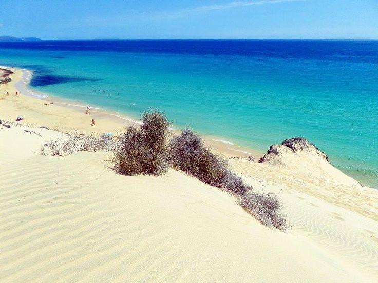 Playa de El Salmo, zona de Sotavento de Jandía Sudeste de Fuerteventura Vista...