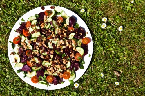 Roasted beetroot, shredded wild garlic and toasted nuts and cranberries