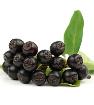 Maqui berry  has an ORAC score (which measures antioxidant activity) of 616. This is 3x the amount of acai (which scores 185) and almost 20x the amount of blueberries (which scores 32).  - Tremendous anti-inflammatory properties. Inflammation is highly correlated with many chronic illnesses such as cancer, fibromyalgia and heart disease.  - High in iron, calcium and vitamin C