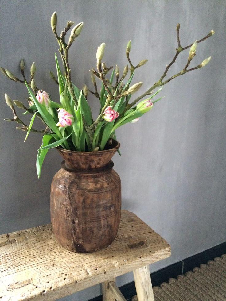 magnoliatakken met tulpjes