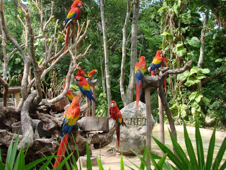 Xcaret, Cancun, Quintana Roo