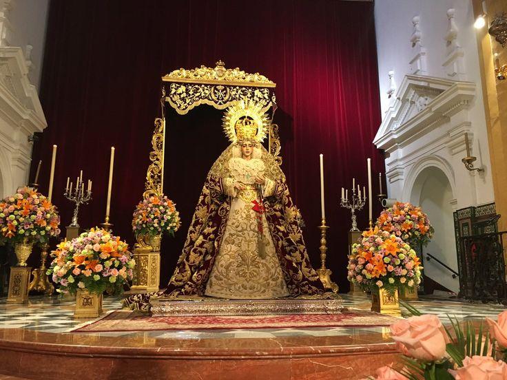 Besamanos María Santísima del Refugio, Hermandad de San Bernardo. Sevilla, Enero 2017