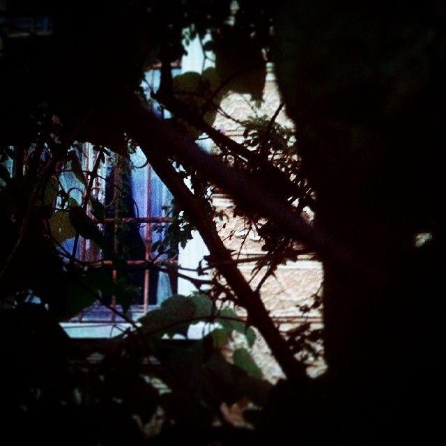 #behind the #window .... #creepy #abandoned #house in #Udine *** #friuliveneziagiulia #friuli #instaitaly #instafriuli #instafvg #igersfvg #igersudine #igersfriuli #loves_united_friuli #loves_friuliveneziagiulia ***