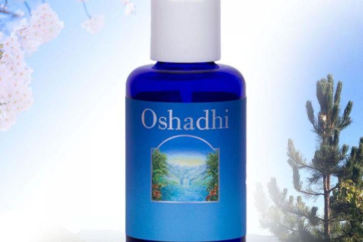 Oshadhi Singapore, facial oil