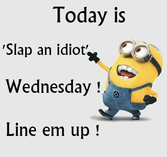 Today is 'Slap an idiot' Wednesday! Line 'em up! - minion ...
