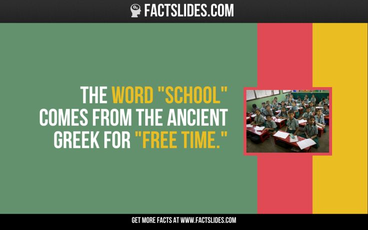 """The word """"school"""" comes from the ancient Greek for """"free time."""""""