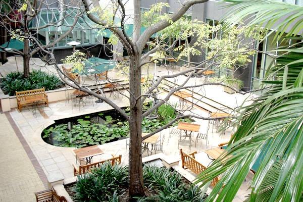 The Pav Bar - Stamford Plaza Hotel Brisbane