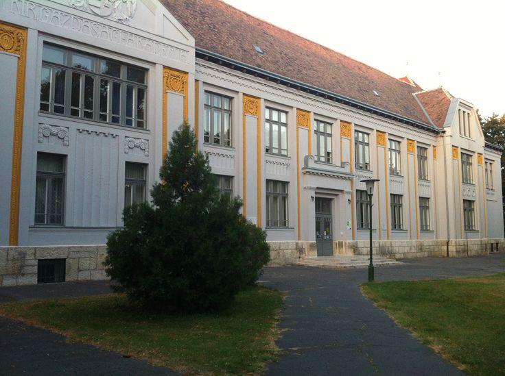 Mosonmagyaróvár Egyetem
