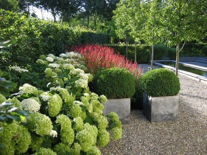Moderne Tuinen - Strak en Modern Tuinontwerp