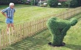 Interesting topiary revenge...perfect for the annoying neighbour who will NOT respect the property line!