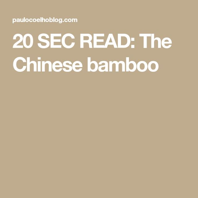 20 SEC READ: The Chinese bamboo