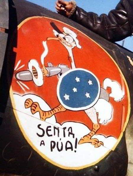 Brasão usado pelos pilotos brasileiros.