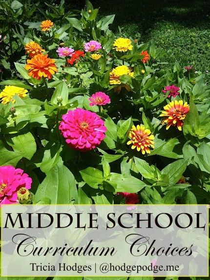 Middle School Curriculum Choices at Hodgepodge - favorites from all our years homeschooling!