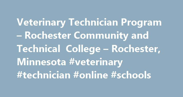 Veterinary Technician Program – Rochester Community and Technical College – Rochester, Minnesota #veterinary #technician #online #schools http://utah.nef2.com/veterinary-technician-program-rochester-community-and-technical-college-rochester-minnesota-veterinary-technician-online-schools/  # Veterinary Technician Overview Veterinary Technician The trend toward group practices, increased client expectations of quality care, and an economic need to leverage Veterinarians productivity, have…