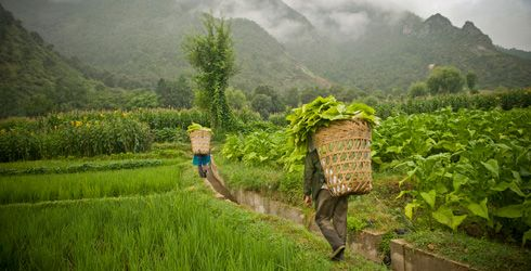 Rivers and Lakes: Promoting Sustainable Agricultural Practices ...