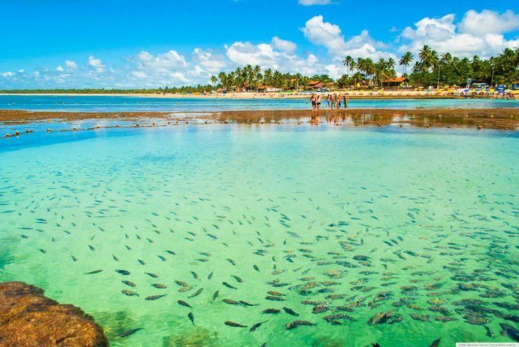 10 rotas para fazer um mochilão pelo Brasil  Guia Viajar Melhor