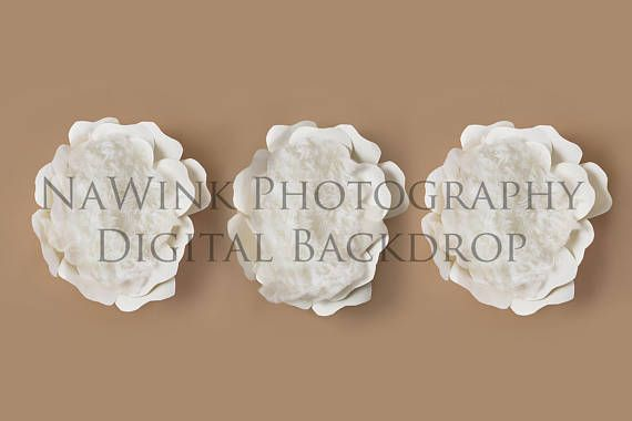 Newborn Digital Backdrop // Fine Art Triplet Newborn Flower