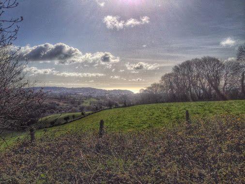 Cockington Valley View