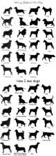 I see dogs by breed name: Sees Dogs, Animals, Cowboy Bebop, Funny Pictures, Corgi, Funny Stuff, So True, Funnies