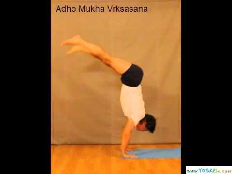Video Handstand. Adho Mukha Vrksasana