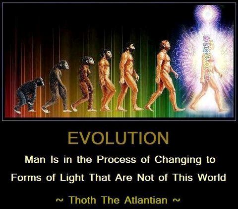 lightbeings | Evolution of Light Being | The Mystic Circle