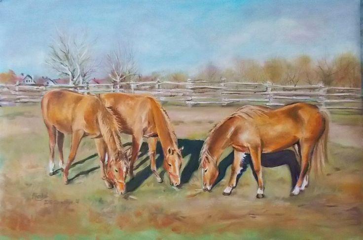 Horses-Olaj- vászon- 40x60 cm